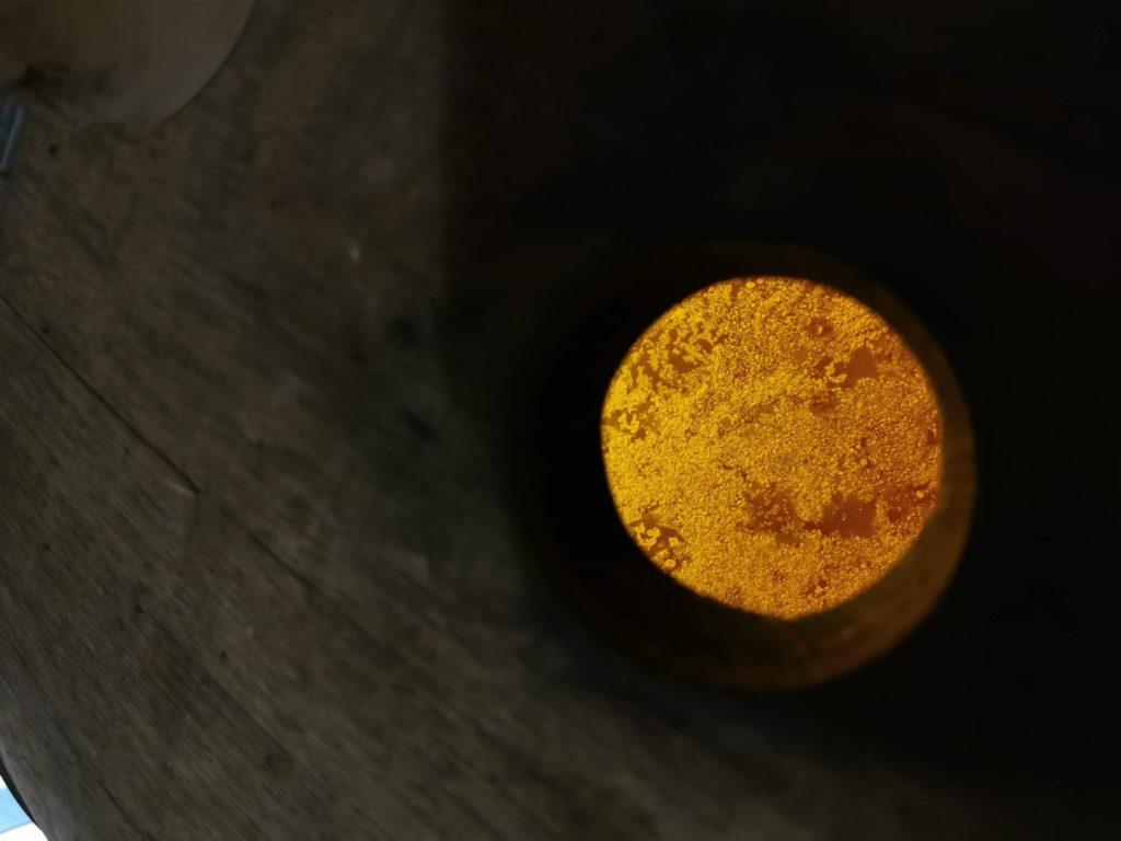 Voile de levure d'un vin jaune jurassien