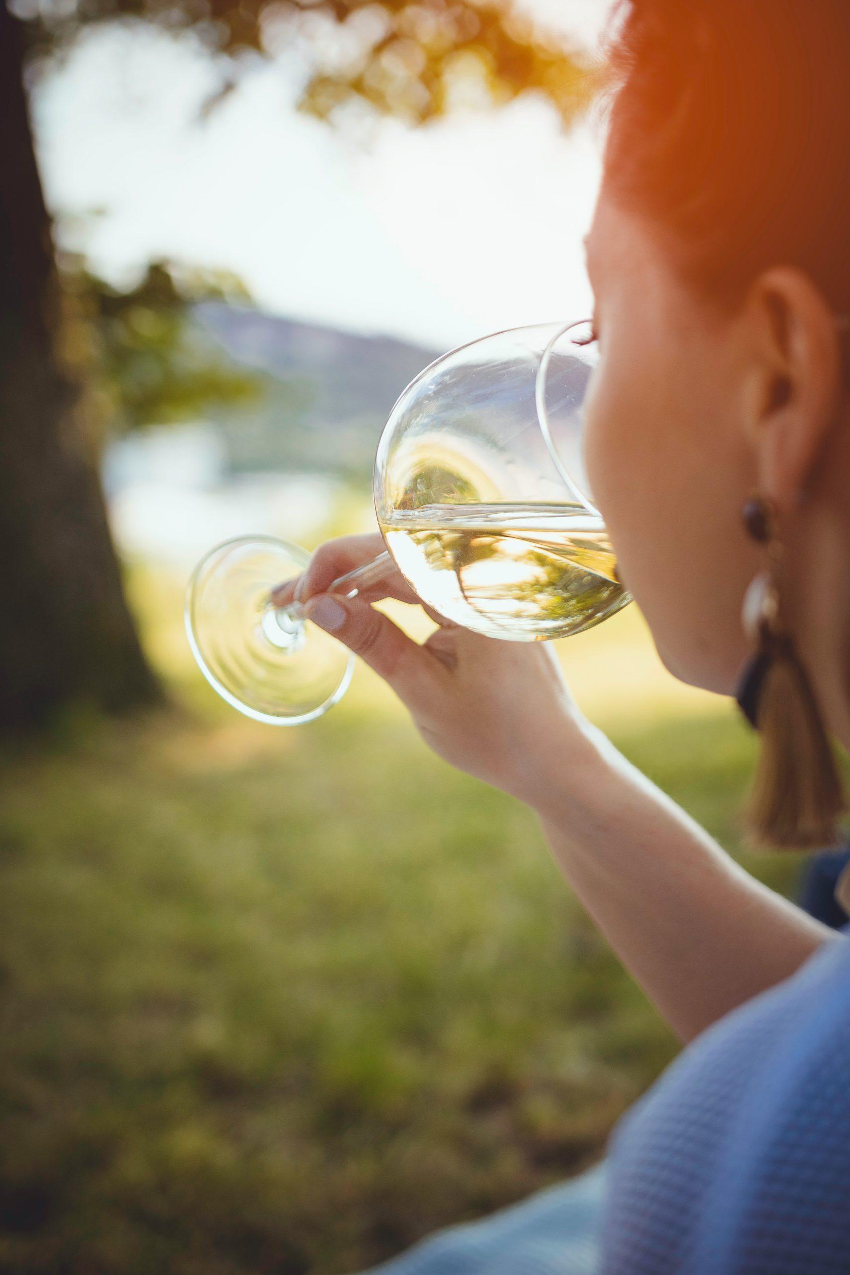 Comment bien déguster un vin?
