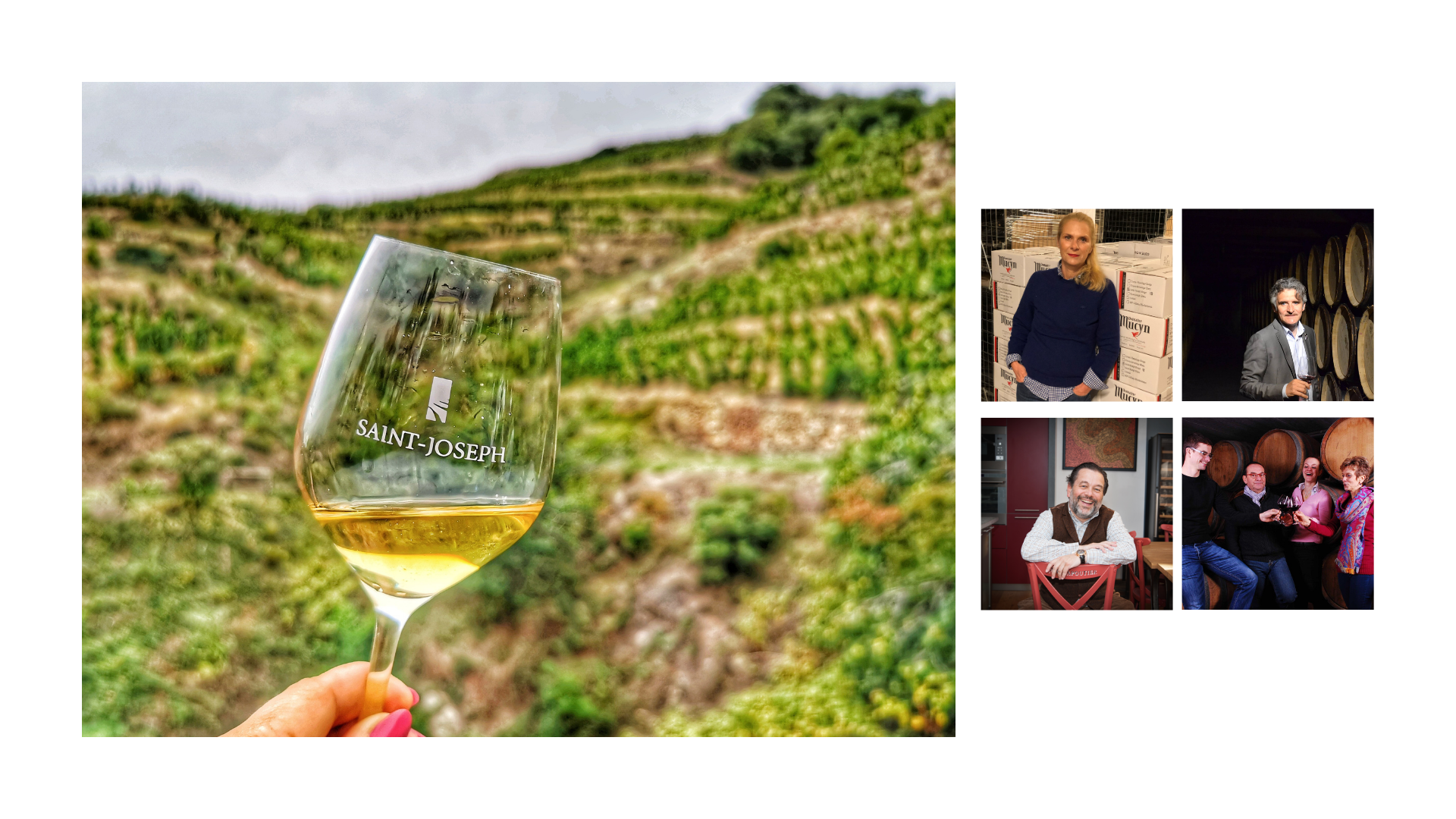 Regards croisés sur les vins blancs de l'appellation Saint-Joseph